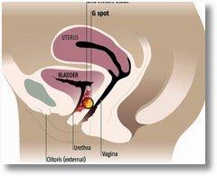 ... arounds woman electro stimulation bdsm man tissue growth stimulation