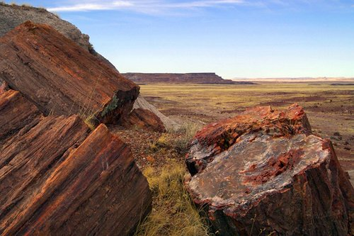 petrified-forest-national-park1