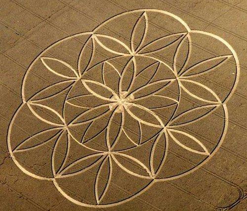 crop-circles02