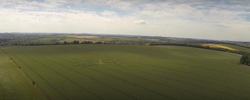 crop circles 2015c