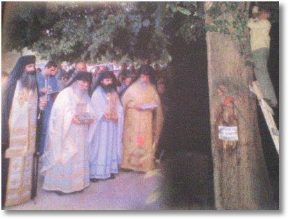 Sf Nicolae Vounena copac