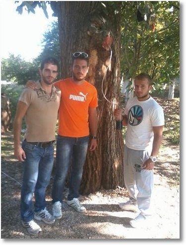 Sf Nicolae Vounena copac1